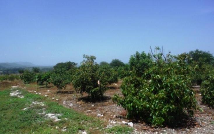 Foto de terreno habitacional en venta en  , san rafael zaragoza, tlaltizapán de zapata, morelos, 1574584 No. 04