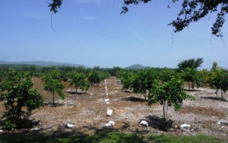 Foto de terreno habitacional en venta en, san rafael zaragoza, tlaltizapán de zapata, morelos, 1574584 no 06
