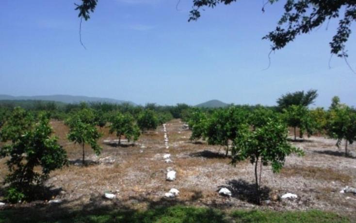 Foto de terreno habitacional en venta en  , san rafael zaragoza, tlaltizapán de zapata, morelos, 1574584 No. 06