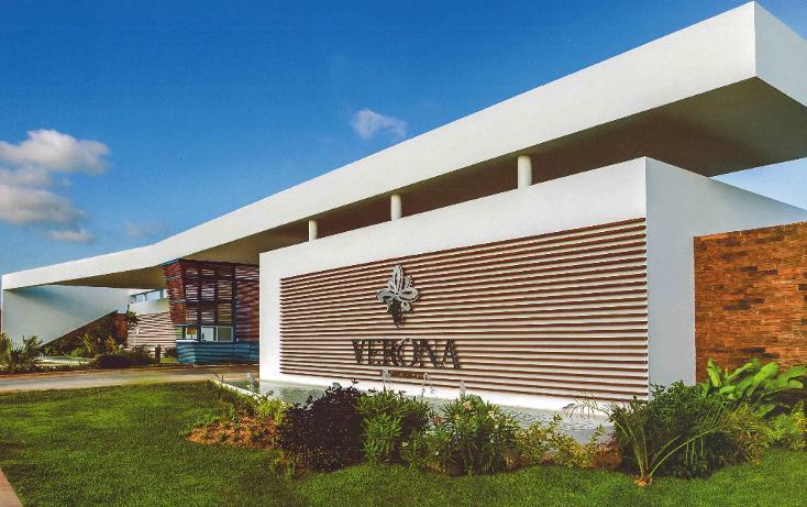 Foto de terreno habitacional en venta en  , san ramon norte i, mérida, yucatán, 1294921 No. 06