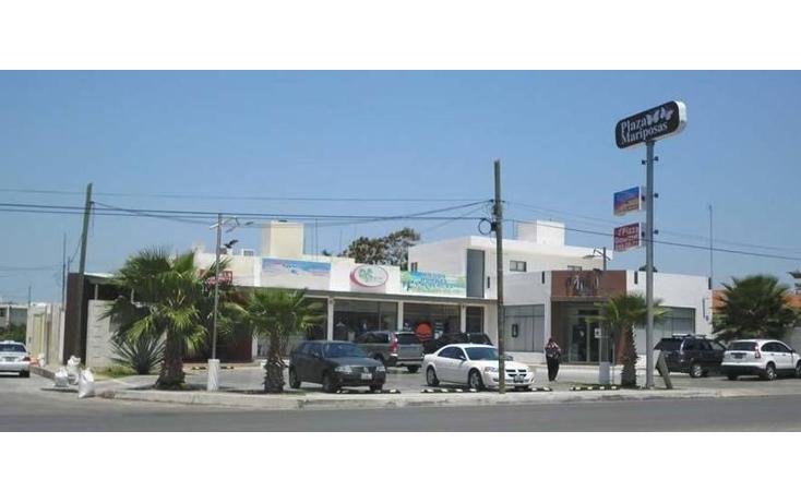 Foto de local en renta en  , san ramon norte, mérida, yucatán, 1110517 No. 02