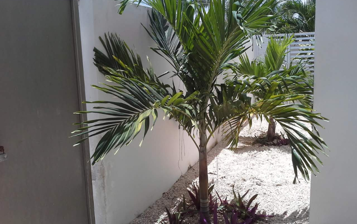 Foto de departamento en renta en  , san ramon norte, mérida, yucatán, 1164521 No. 08