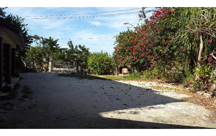 Foto de casa en renta en  , san ramon norte, mérida, yucatán, 1184993 No. 16