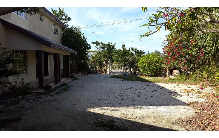 Foto de casa en renta en  , san ramon norte, mérida, yucatán, 1184993 No. 17