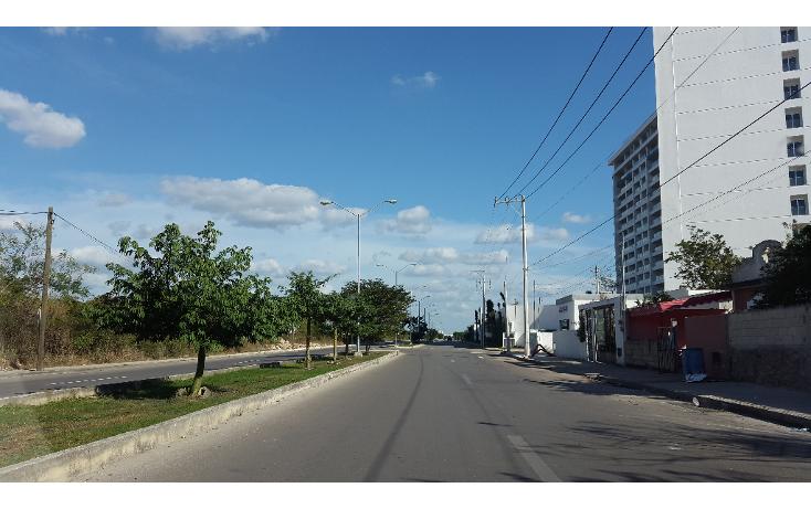 Foto de terreno comercial en renta en  , san ramon norte, mérida, yucatán, 1204375 No. 02