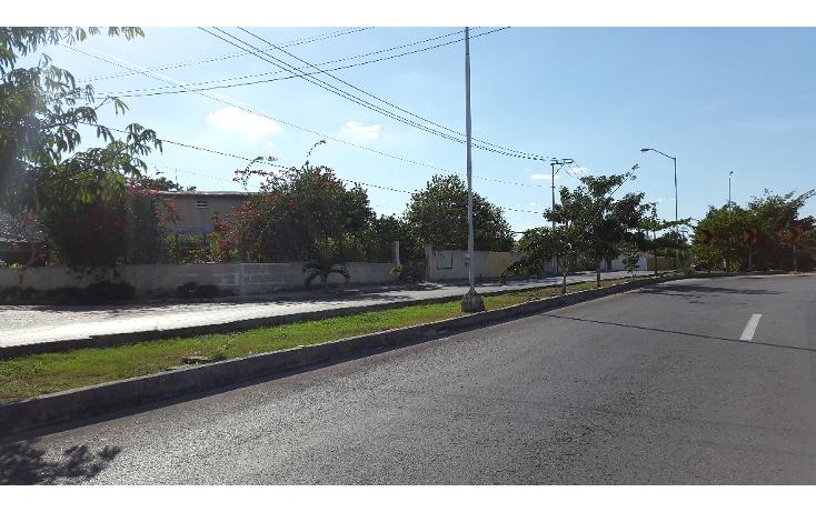 Foto de terreno comercial en renta en  , san ramon norte, mérida, yucatán, 1204375 No. 03