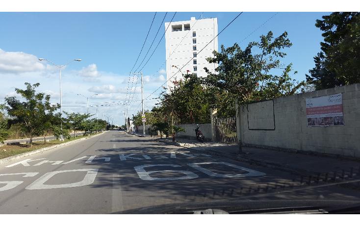 Foto de terreno comercial en renta en  , san ramon norte, mérida, yucatán, 1204375 No. 04