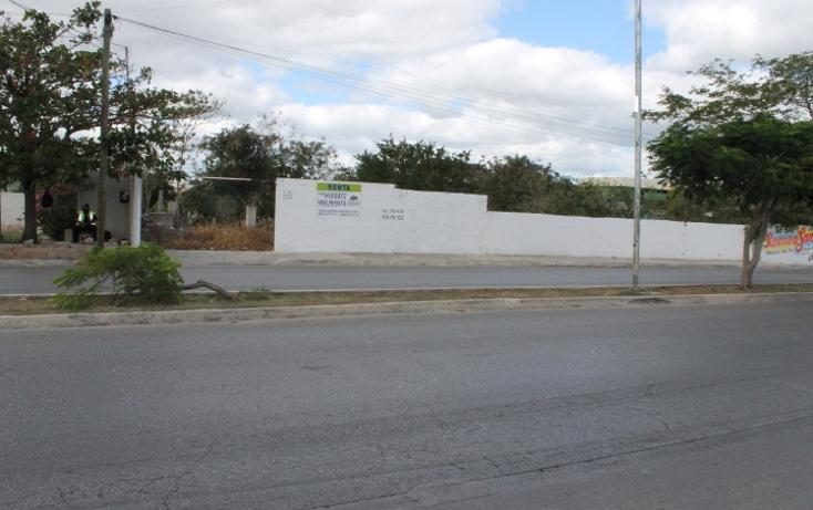 Foto de terreno habitacional en renta en  , san ramon norte, mérida, yucatán, 1205419 No. 01