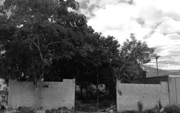Foto de terreno habitacional en venta en  , san ramon norte, mérida, yucatán, 1248617 No. 05
