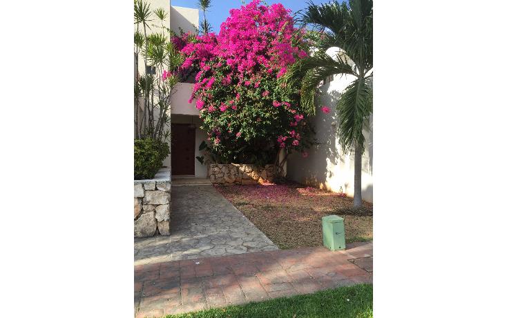 Foto de casa en renta en  , san ramon norte, m?rida, yucat?n, 1276429 No. 02