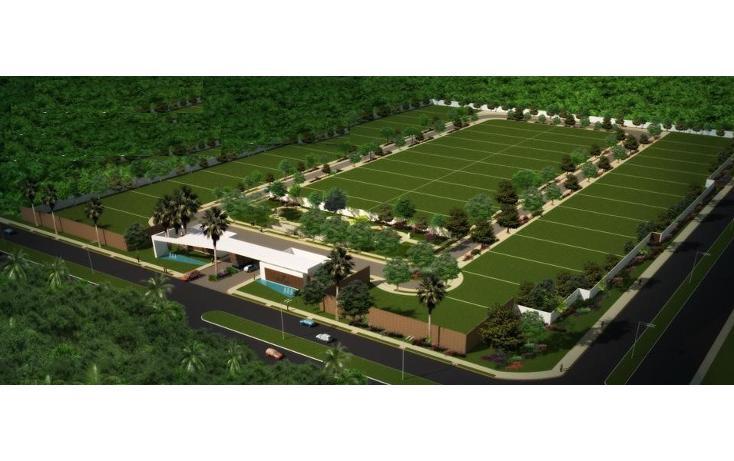 Foto de terreno habitacional en venta en  , san ramon norte, mérida, yucatán, 1277163 No. 02