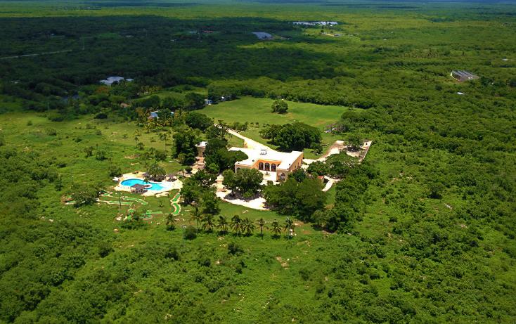 Foto de terreno habitacional en venta en  , san ramon norte, mérida, yucatán, 1616698 No. 01