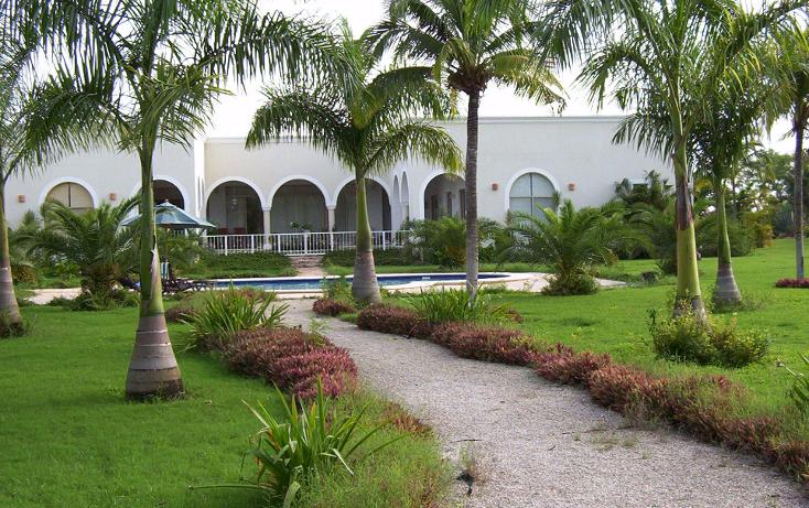 Foto de terreno habitacional en venta en  , san ramon norte, mérida, yucatán, 1617518 No. 01