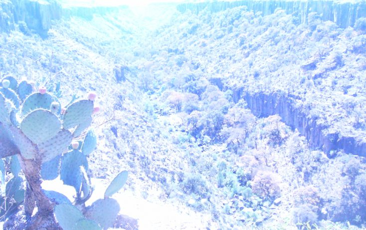 Foto de terreno comercial en venta en, san sebastián de las barrancas norte, san juan del río, querétaro, 1676300 no 03