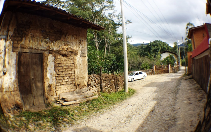 Foto de terreno habitacional en venta en  , san sebasti?n del oeste, san sebasti?n del oeste, jalisco, 1351851 No. 05