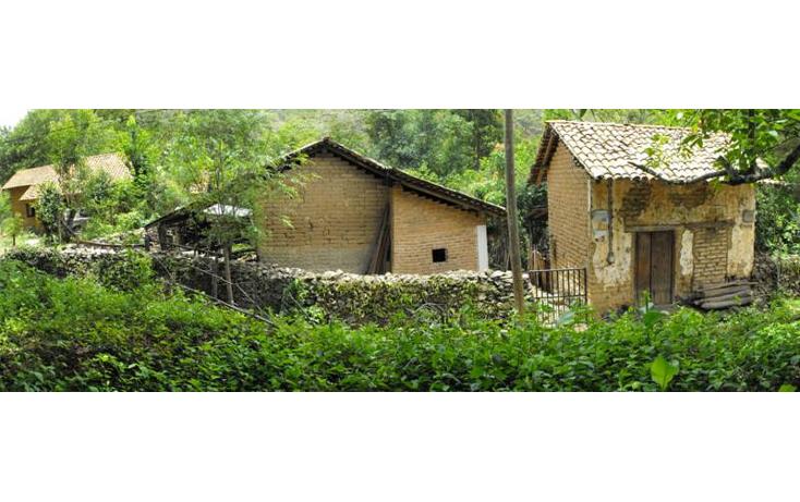 Foto de terreno habitacional en venta en  , san sebasti?n del oeste, san sebasti?n del oeste, jalisco, 1351851 No. 12