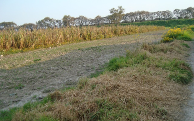 Foto de terreno habitacional en venta en  , san sebastián, metepec, méxico, 1241393 No. 04