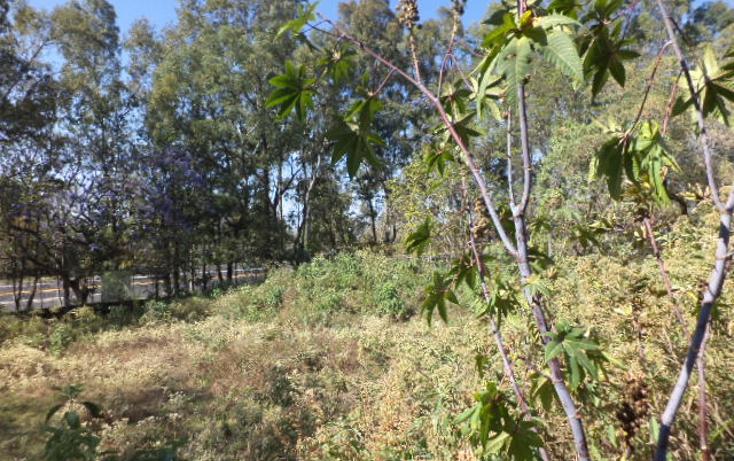 Foto de terreno comercial en venta en  , san sebasti?n, tepoztl?n, morelos, 1820012 No. 06