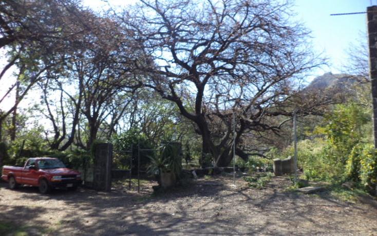 Foto de terreno comercial en venta en  , san sebasti?n, tepoztl?n, morelos, 1820012 No. 09