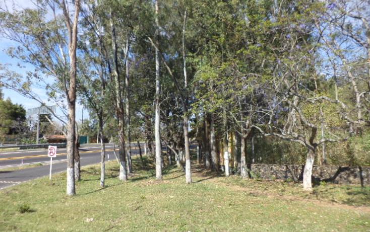 Foto de terreno comercial en venta en  , san sebasti?n, tepoztl?n, morelos, 1820012 No. 13