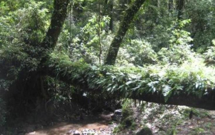 Foto de terreno habitacional en venta en  , san simón el alto, valle de bravo, méxico, 829493 No. 03