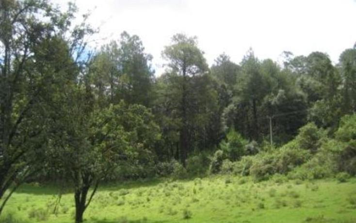 Foto de terreno habitacional en venta en  , san simón el alto, valle de bravo, méxico, 829493 No. 04