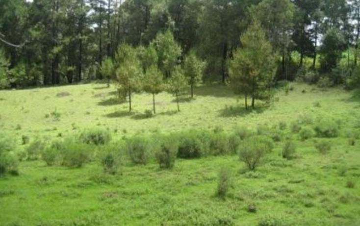 Foto de terreno habitacional en venta en  , san simón el alto, valle de bravo, méxico, 829493 No. 10