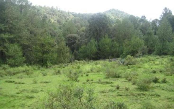 Foto de terreno habitacional en venta en  , san simón el alto, valle de bravo, méxico, 829493 No. 11