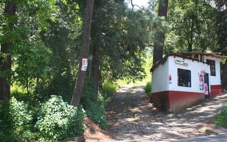 Foto de casa en venta en  , san simón el alto, valle de bravo, méxico, 829589 No. 05