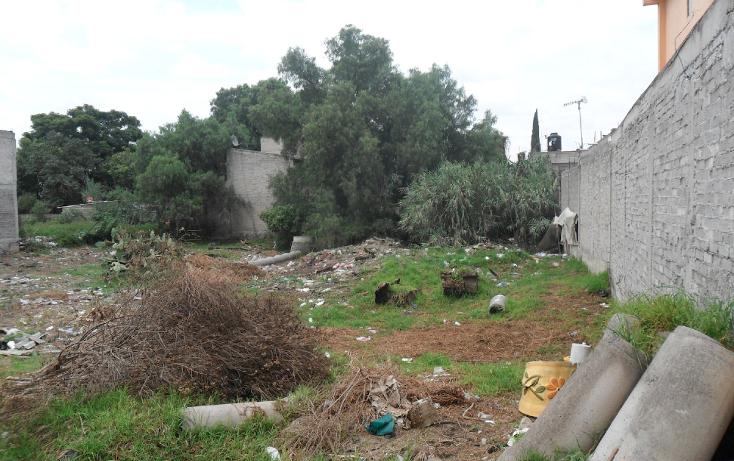 Foto de terreno habitacional en venta en  , san vicente chicoloapan de juárez centro, chicoloapan, méxico, 1301615 No. 04