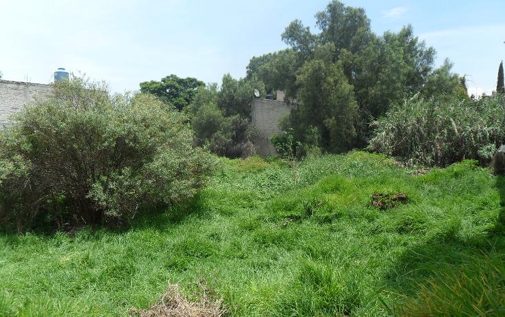Foto de terreno habitacional en venta en  , san vicente chicoloapan de juárez centro, chicoloapan, méxico, 1301615 No. 07