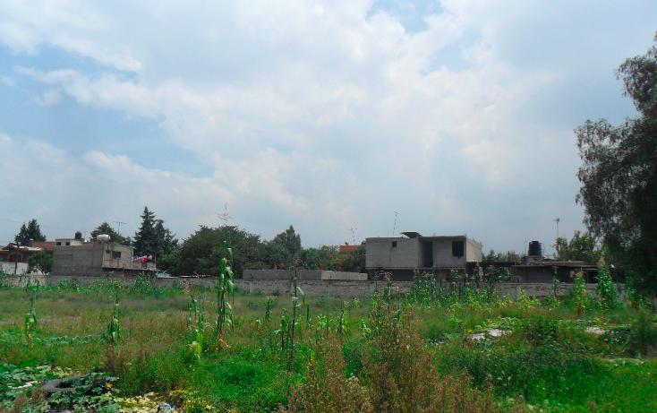 Foto de terreno habitacional en venta en  , san vicente chicoloapan de juárez centro, chicoloapan, méxico, 1916242 No. 04