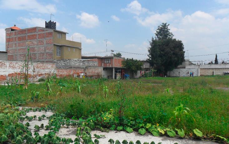 Foto de terreno habitacional en venta en  , san vicente chicoloapan de juárez centro, chicoloapan, méxico, 1916242 No. 06