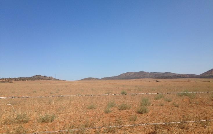 Foto de terreno habitacional en venta en  , san vicente, ensenada, baja california, 1403639 No. 04