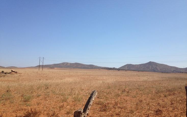 Foto de terreno habitacional en venta en  , san vicente, ensenada, baja california, 1403639 No. 09