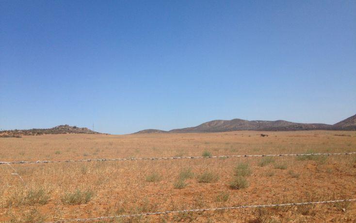 Foto de terreno habitacional en venta en, san vicente, ensenada, baja california norte, 1403639 no 12