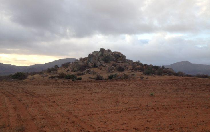 Foto de terreno habitacional en venta en, san vicente, ensenada, baja california norte, 1403639 no 31