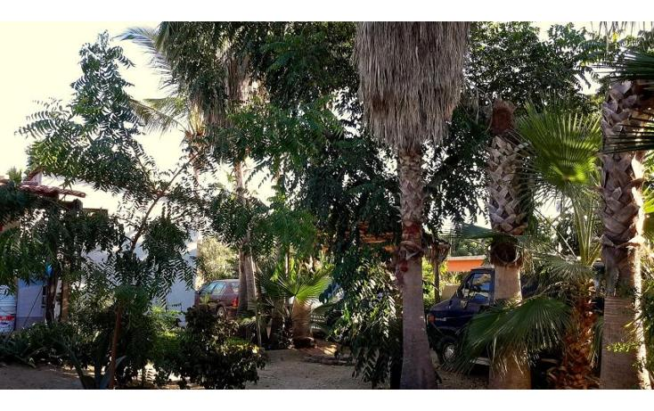 Foto de casa en venta en  , san vicente, la paz, baja california sur, 1757804 No. 17