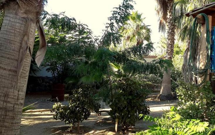 Foto de casa en venta en  , san vicente, la paz, baja california sur, 1757804 No. 18
