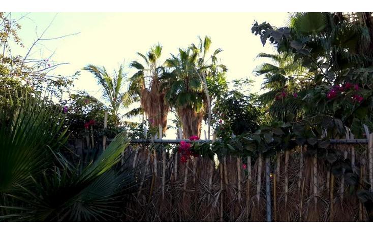Foto de casa en venta en  , san vicente, la paz, baja california sur, 1757804 No. 21