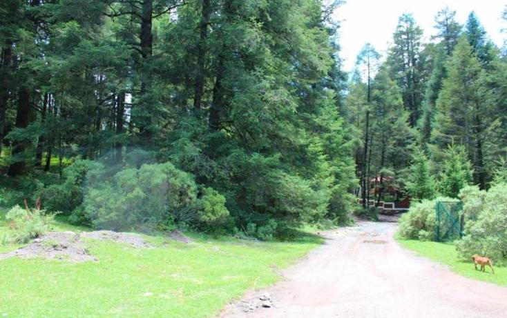 Foto de terreno habitacional en venta en  , san vicente, mineral del monte, hidalgo, 1022041 No. 02