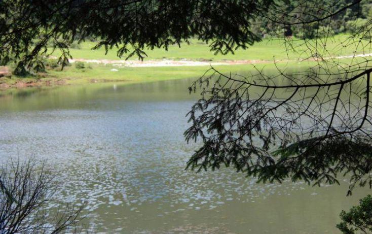 Foto de terreno habitacional en venta en, san vicente, mineral del monte, hidalgo, 1022041 no 03
