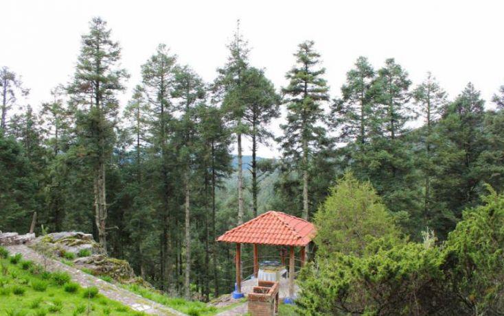 Foto de terreno habitacional en venta en, san vicente, mineral del monte, hidalgo, 1022041 no 07