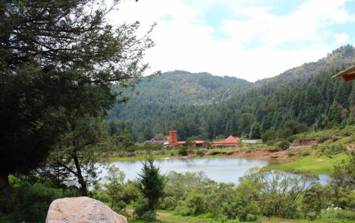 Foto de terreno habitacional en venta en  , san vicente, mineral del monte, hidalgo, 1022041 No. 11