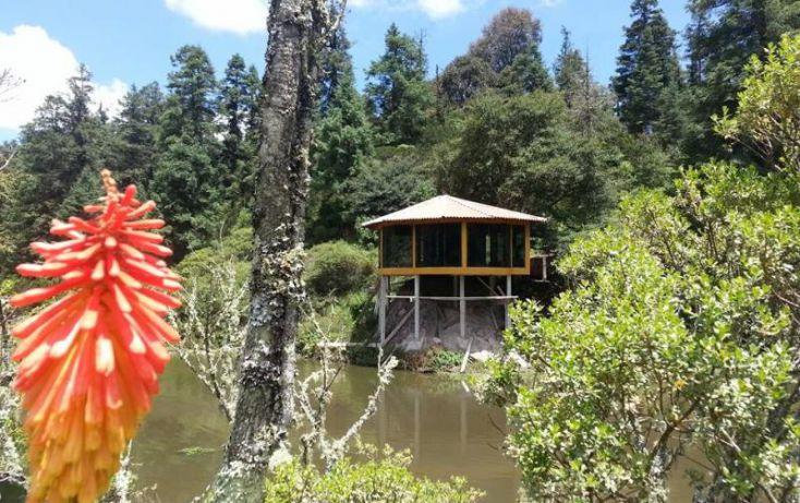 Foto de terreno habitacional en venta en, san vicente, mineral del monte, hidalgo, 1022041 no 23