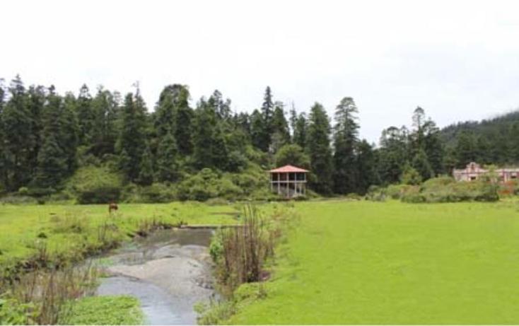 Foto de terreno habitacional en venta en  , san vicente, mineral del monte, hidalgo, 510559 No. 07