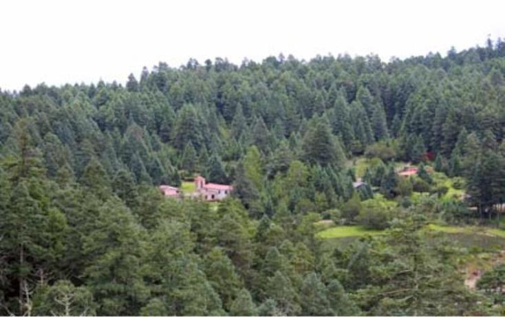 Foto de terreno habitacional en venta en  , san vicente, mineral del monte, hidalgo, 518106 No. 02