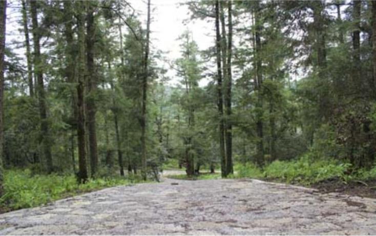 Foto de terreno habitacional en venta en  , san vicente, mineral del monte, hidalgo, 519705 No. 02