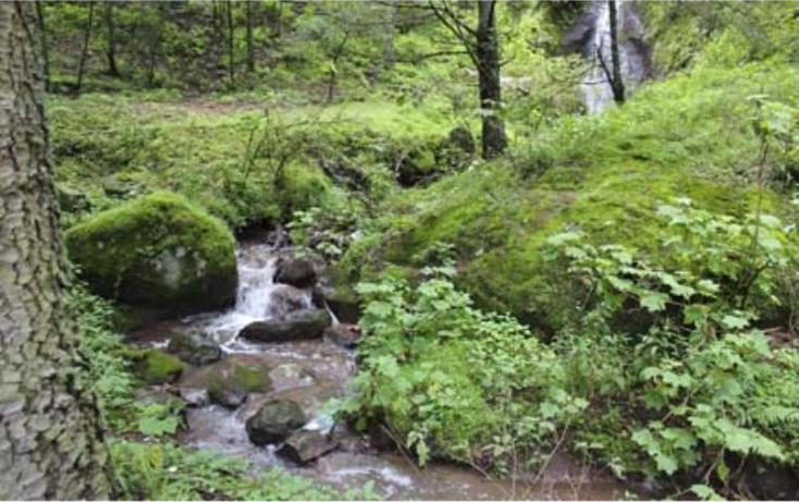Foto de terreno habitacional en venta en  , san vicente, mineral del monte, hidalgo, 519705 No. 03