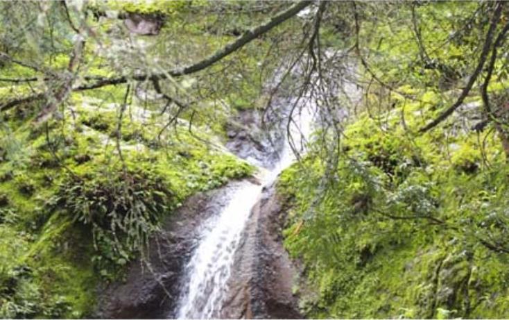 Foto de terreno habitacional en venta en  , san vicente, mineral del monte, hidalgo, 519705 No. 05